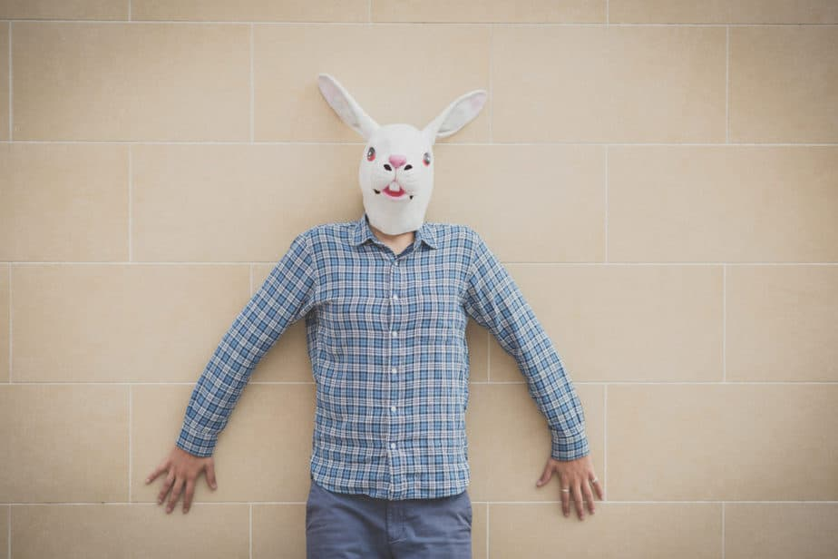 What Does Harvey The Rabbit Represent?